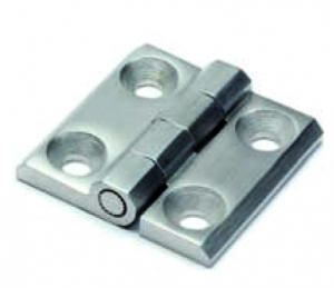 CCX _ AISI 316 Stainless Steel Hinge with Through Hole